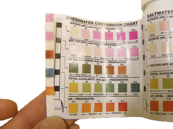 Water Test Strips, Hardness Alkalinity and pH